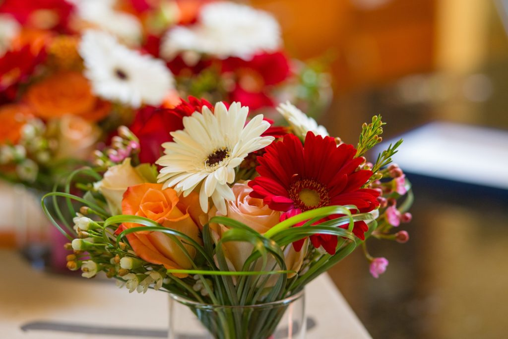 Flowers, bouqet, red, white