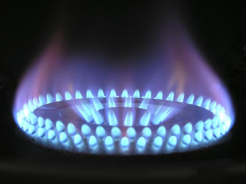 Blue fire, fire, burn, burner, stove, cooking