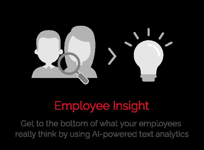 Employee Insight